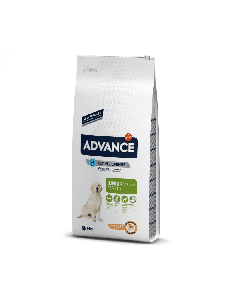 Advance maxi junior 14 kg