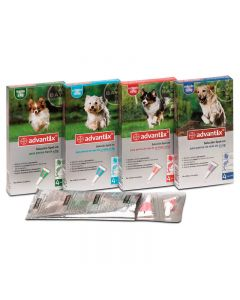 Advantix Bayer 4p +25kg import legalizado
